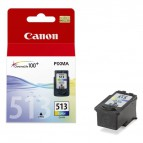 Originale Canon inkjet cartuccia A.R. security Chromalife 100+ CL-513 - 13 ml - colore - 2971B009