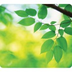 Mousepad ecologici Earth Series Fellowes - foglie - 5903801