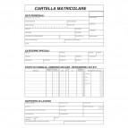 Cartella matricolare Semper Multiservice - 170x240 mm - 1755M0000 (conf.100)