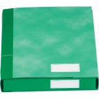 Gruppi 6 cartelle Essentials Esselte - 3 lembi - 25x32x4 cm - verde - 391960180