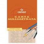 Carta opaca millimetrata Canson - A4 - 80 g/mq - 10ff - C200005812