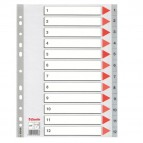 Separatore numerico 1/12 - PPL - A4 - 22,5x29,7 cm - grigio -Esselte