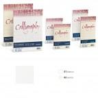 Carta Calligraphy Millerighe - A4 - 100 gr - avorio 02 - Favini - conf. 50 fogli