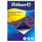 Carta da ricalco Plenticopy 200 Pelikan - blu - 0C31GA (conf.10)