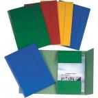 Cartelle 3 lembi plastificate Esselte - verde - 390346180 (conf.5)