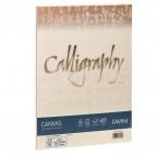 Calligraphy Canvas Ruvido Favini - avorio - A4 - 100 g - A69Q214 (conf.50)