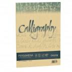 Calligraphy Pergamena Liscio Favini - oro - fogli - A4 - 190 g - A69W084 (conf.50)