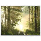 Quadro decorativo Paperflow - 60x80 cm - foresta - orizzontale - K900385
