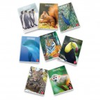 Quaderni A4 Animal World Pigna - A4 - 4F (Quadretti) - 40+R ff - 02243691F (conf.10)